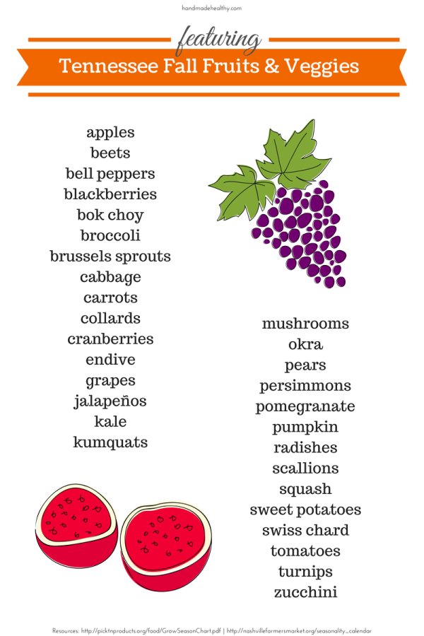 Tennessee Fall Fruits & Veggies