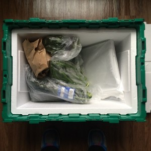 green-bean-delivery-nashville