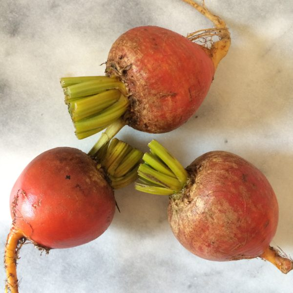 bountiful blessings beets